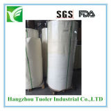 PE Coated Paper Roll for Cup