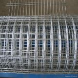 Electro Galvanized Welded Wire Mesh Roll