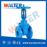 Industrial Wedge Rising-Stem Gate Valve