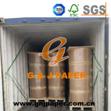 Good Quality Carbonless Paper in Roll Packing