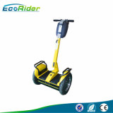 2 Wheel Brush 2000 Watt Self Balancing Scooter City Scooter