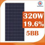 Trina Solar 320W 330W 340W Solar Panel with Wholesale Price Cost 350watt Solar Panels Cost