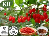 100% Natural Wolfberry Extract Polysaccharides 30%-50% UV