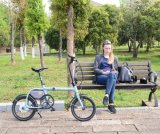 16 Inch Mini Bike