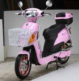 350W Mini Electric Bicycle