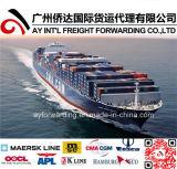Cheap Ocean Shipping to Georgia