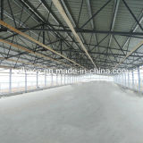 Steel Structure Poultry House Design and Construction with High Standard