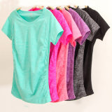 Factory Hot Sell Lady′s Seamless Sport T-Shirt