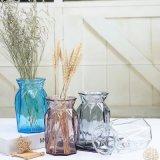 Glass Flower Vase for Home Decoration