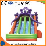 Kids Oceans Theme Park Toys Inflatable Bouncer (WK-W1205)