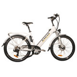 2014 Grand New City Electric Bicycle (JB-TDF15Z)