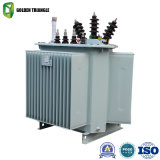 Three-Phase Distribution Electric Transformer with Toroidal Coil