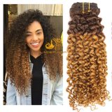 "Jc27 Strawberry Blonde Jerry Curly 8""-26"" Remy Human Hair Clip in Hair Extension in Stock"
