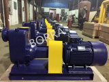 Self-Priming Electric Sewage Trash Centrifugal Water Pump