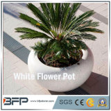 Polished White Stone Flower Pot/Vase for Garden Decoration/Landscape Project