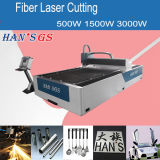 Promotion/1000W Fiber Laser Cutter From Han's Group