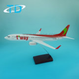 T'way Air B737-800 1: 100 Scale Resin Model Craft Plane