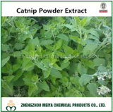Manufacturer Offer Natural Whole Herb Catnip Powder Extract