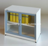Glazed Swing Door File Cabinet (SV-SWG0735)
