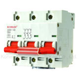 High Quality Mini Circuit Breaker Knb1-100 (NC-100-3P)
