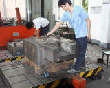 Professional and Precision Aluminum Die Casting Mould