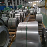 Stainless Steel Cold Rolled Coil/Strip Compective Price 316 316L