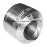 Forged Steel High Pressure Weldolet