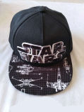 Star 3D Embroidery Flat Bill Boys Cap Printing Visor