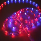 LED Light Swimming Pool Rope Light, 220V Color Changing LED Rope Grow Light