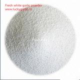 Natural Garlic Powder Wholesale