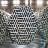 Making Warmhouse/Greenhouse Use Galvanized Steel Tube