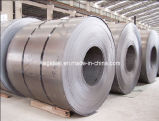 Hot Rolled Steel Coil From Tangang Steel