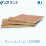 High Quality Competitive Price Okoume Bintangor Commercial Plywood for Furniture