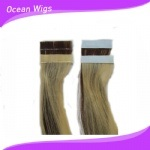 100% Human Virgin Remy Skin Tape Hair Extension (PU-01)