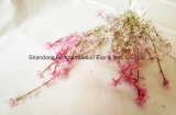 Artificial Flower for Christmas Decoration