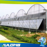 Chinese Cheap Tomato/Strawberry/Lettuce Hydroponic Plastic Film Greenhouse