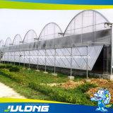 Chinese Cheap Tomato/Strawberry/Lettuce Plastic Film Greenhouse