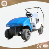New Model 2 Passengers Chinese Mini Electric Golf Carts