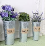 Wholesale Galvanized Metel Craft Flower Planter Pot Home Garden