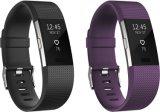 Wholesale Ce Activity Tracker + Heart Rate Cardio Smart Bracelet Sport Watch