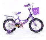 BMX Kids Bike Children Ride on Bicycle Princess Bike
