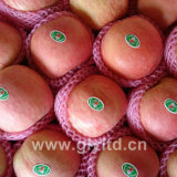 Fresh FUJI, Huaniu, Gala, Golden, Qinguan Apple
