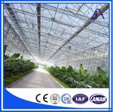 Low Cost Aluminium Profiles for Greenhouse Ba018