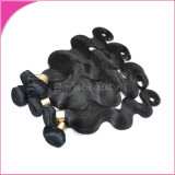 Top Selling Beauty Salon Wholesale Virgin Indian Human Hair Extension Human Hair