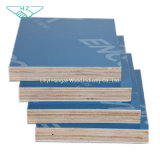 12mm Marine Blue Film Faced Plywood Sheet