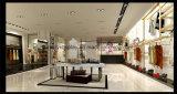 Big Capacity Ladies Garments Display/Display Equipment for Shops