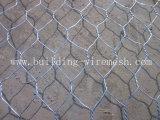 Galvanized Professional Hexagonal Wire Netting