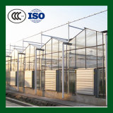 Window Clear Flat Solar Safety Curved Frosted Laminated Toughened Tempered Glass for Building From Factory Manufacture Supply with Wholesale Price