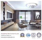 Commerical Hotel Furniture for Living Room Furniture Set (YB-WS7)