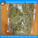 Birds and Poultry Feed Application Dried Mealworms